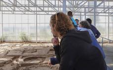 Las visitas guiadas gratuitas al Cerro de San Vicente de comienzan el día 14