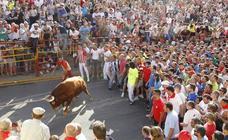 Más de 3.000 personas participan en la petición del Toro Enmaromado de Benavente