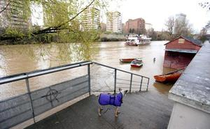 El Duero y el Adaja, en Valladolid, y el Arlanza, en Palencia, alcanzan el nivel de alerta en las últimas horas