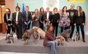 Un nuevo plan para mejorar el trato hacia nuestros animales de compañía