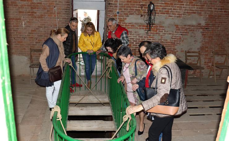 Jornada de puertas abiertas en la Plaza de Toros de Valladolid