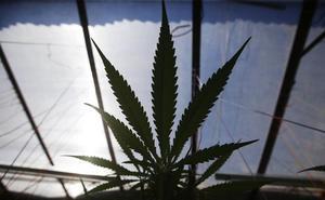 El consumo de cannabis entre los jóvenes de Castilla y León se aproxima ya al del tabaco