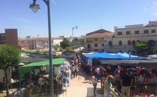 Proponen trasladar el mercadillo de Ciudad Rodrigo al paseo Carmelitas