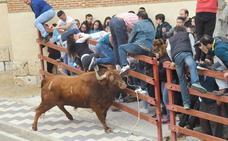 Tres mujeres resultan heridas en el Toro del Sarmiento de La Seca