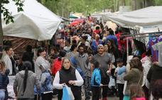 Los caracoles regresan al Sotillo de Palencia