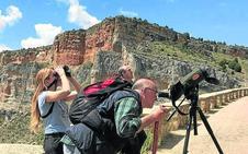 El enoturismo descubre la ruta segoviana de Ribera del Duero