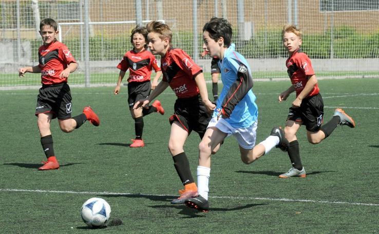 Deporte Base del 5 y 6 de mayo. Valladolid