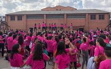 1200 escolares de Arévalo reivindican la educación física en las calles de la ciudad
