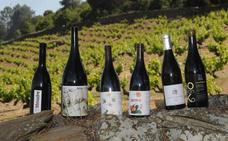 Nueve 'novias', para nueve vinos