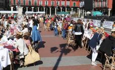 Cientos de encajeras comparten en la Plaza Mayor su afición por los hilos