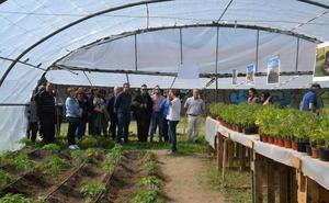 Un proyecto de Cáritas promueve la inclusión a través de huertos