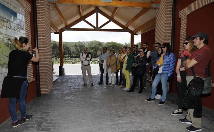 Ruta enoturística en Ribera del Duero enmarcada en la feria 'Valladolid, Plaza Mayor del Vino'