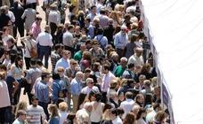 Jornada del domingo en la feria 'Valladolid, Plaza Mayor del Vino'