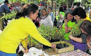 Piñel de Abajo dobla la participación en su VIII Feria de la Biodiversidad
