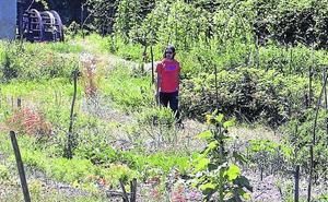 El Ayuntamiento adjudica 26 huertos de ocio entre 118 solicitantes para cuatro años