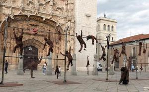 La valla de la vergüenza llega al corazón de Valladolid