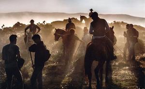 Convocado el 30º premio de fotografía agrícola y ganadera