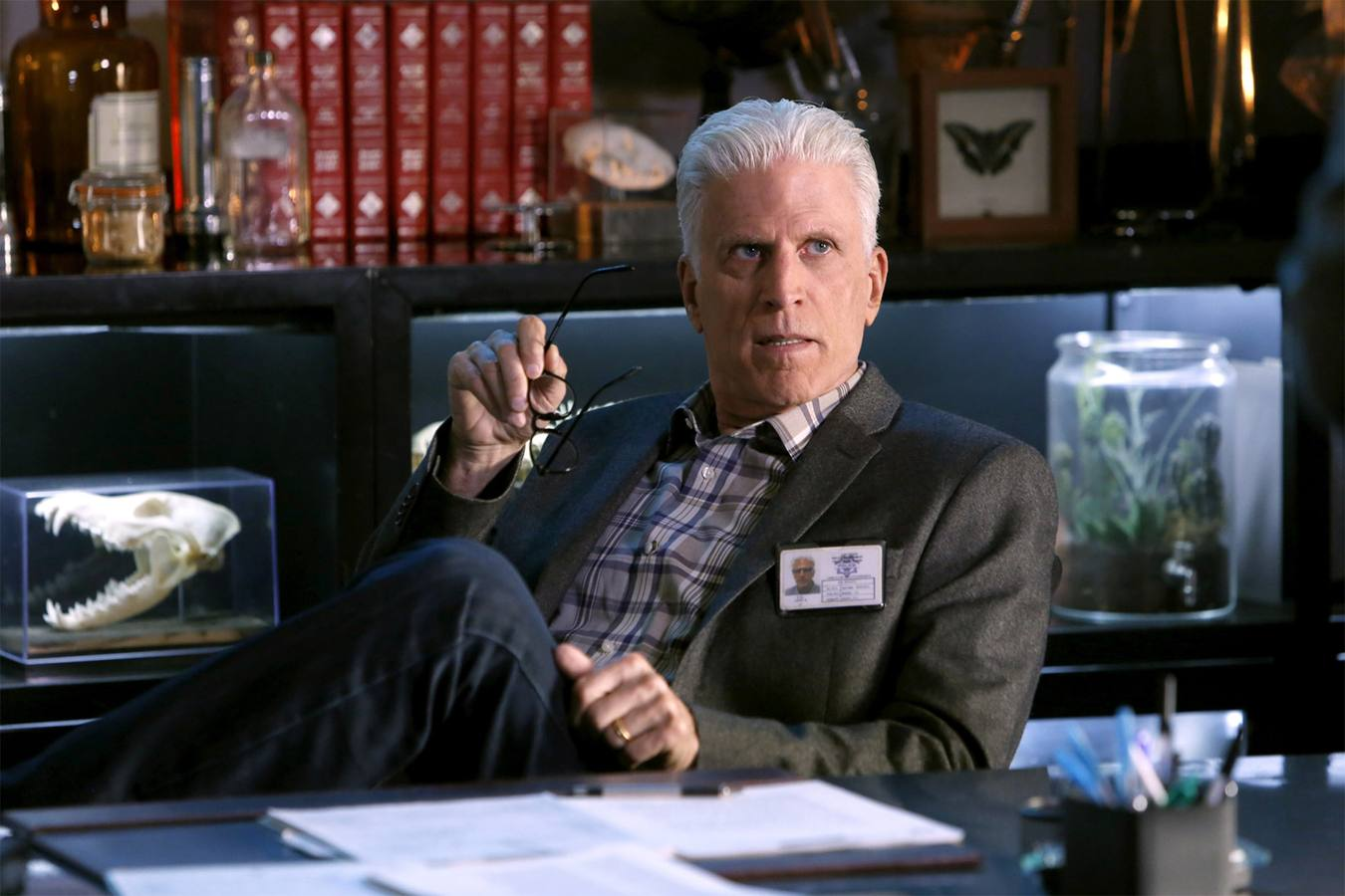 Ted Danson es D.B. Russell