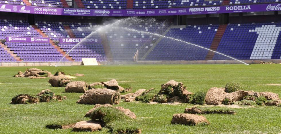 El césped de Zorrilla ya espera el Real Valladolid-FC Barcelona