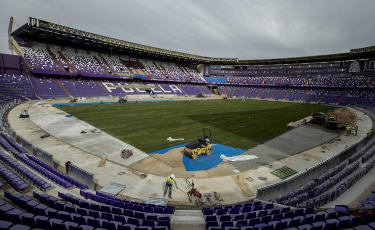 Así están las obras del Nuevo Estadio José Zorrilla