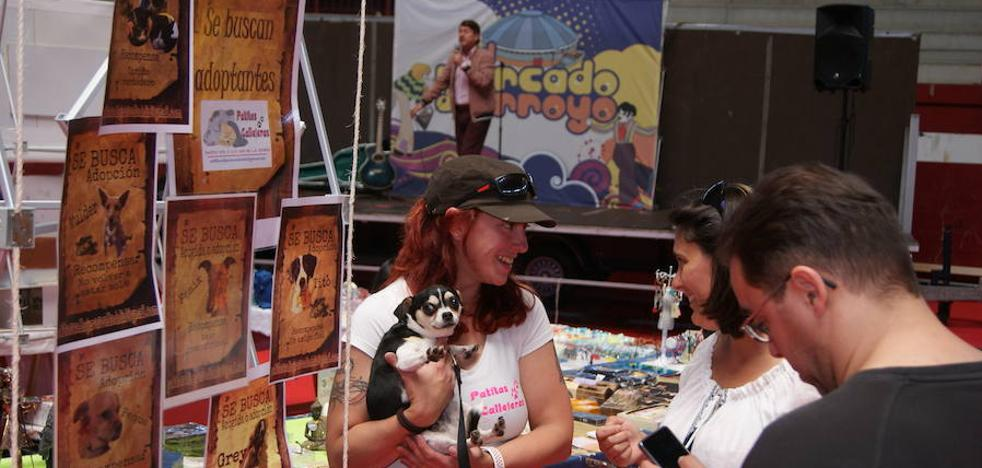 Tito Valera será el artista invitado este domingo en El Mercado de Arroyo
