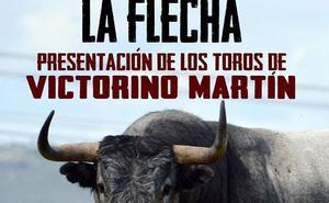 Presentación de los toros de Victorino Martín que se lidiarán en La Flecha el día 23