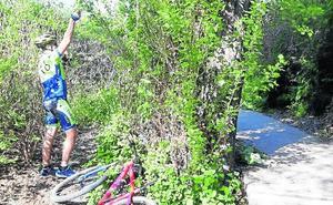 Alertan sobre la colocación de trampas en rutas ciclistas de Arroyo