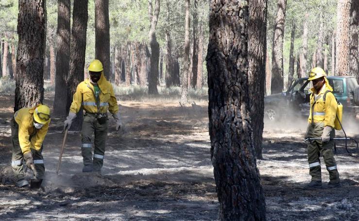 Un rayo causa un incendio en el pinar de la localidad segoviana de Navalilla