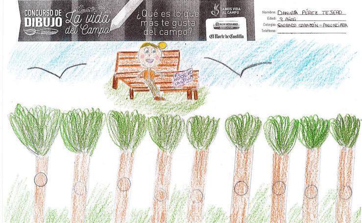 Trabajos de 4º de Primaria en la modalidad de dibujo del I Concurso de Dibujo y Cómic 'La vida del campo'