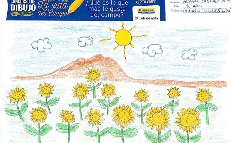 Trabajos de 5º de Primaria en la modalidad de dibujo del I Concurso de Dibujo y Cómic 'La vida del campo'