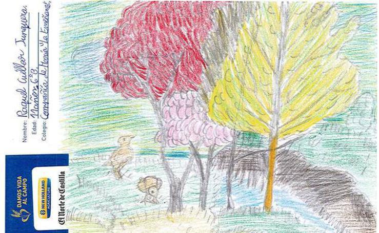 Trabajos de 6º de Primaria en la modalidad de dibujo del I Concurso de Dibujo y Cómic 'La vida del campo'
