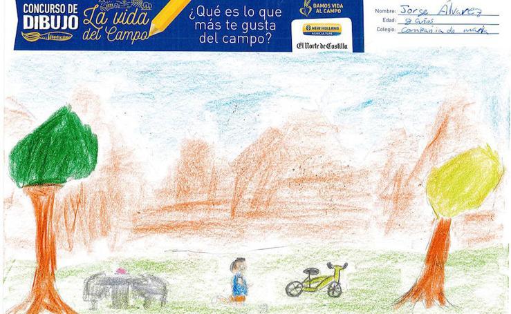 Trabajos de 3º de Primaria en la modalidad de dibujo del I Concurso de Dibujo y Cómic 'La vida del campo'