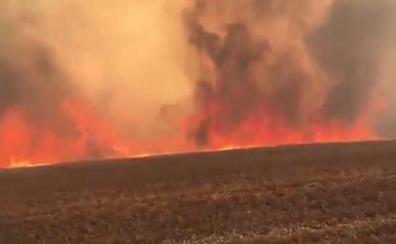 60 hectáreas quemadas en un incendio accidental en la provincia de León