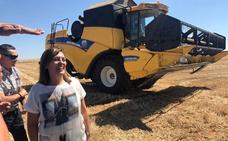 La cosecha en Palencia se ha reducido hasta un 68% por la sequía