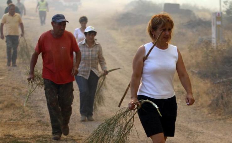 Incendio forestal en la provincia de Zamora