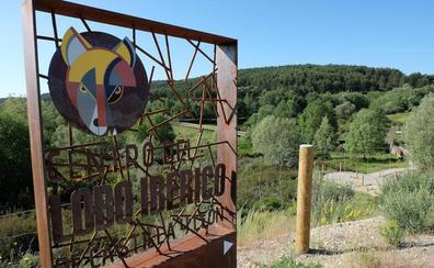 El Centro del Lobo aumenta su número de visitantes