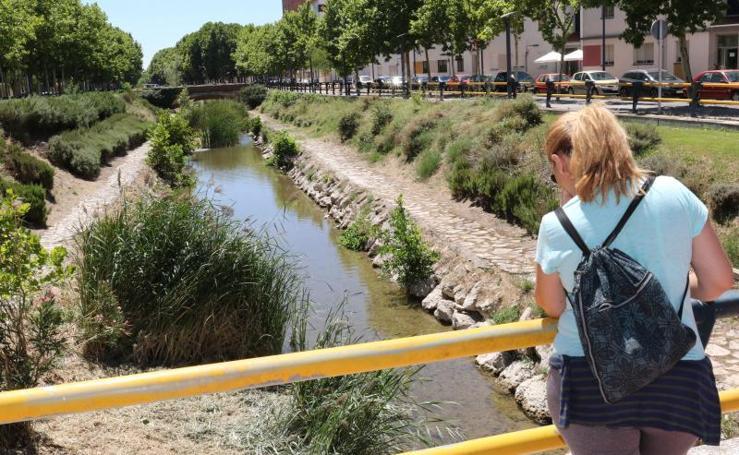 Limpieza del río Esgueva