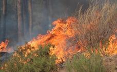 El gran incendio de Encinedo calcinó 9.964 hectáreas, según la Consejería de Medio Ambiente
