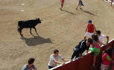 Qué hacer este fin de semana en la provincia de Valladolid
