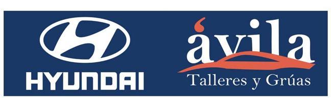 Talleres y Gruas Ávila–Hyundai, concesionario oficial de FIVA 2017
