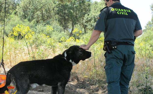 Un guardia civil acaricia a un perro.