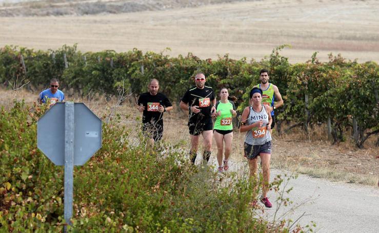 Corcos acoge la cuarta prueba del 'Circuito corriendo entre viñas'