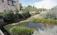 Aprobado el proyecto para recuperar la presa de Tejares dos años después de su rotura