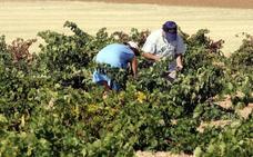 Procuradores regionales apuestan por la agricultura y la industria para el desarrollo de Zamora