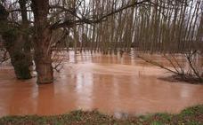 La Confederación del Duero analizará los riesgos en zonas inundables