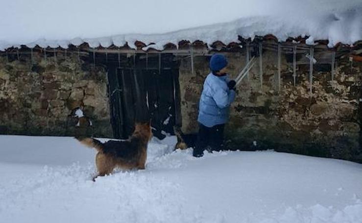 La nieve tiñe de blanco la Montaña Palentina