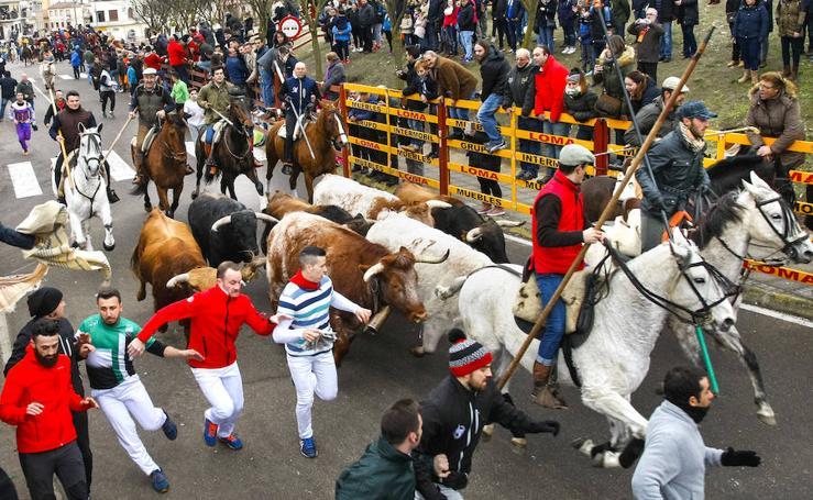 Festejos taurinos del domingo en el carnaval de Ciudad Rodrigo
