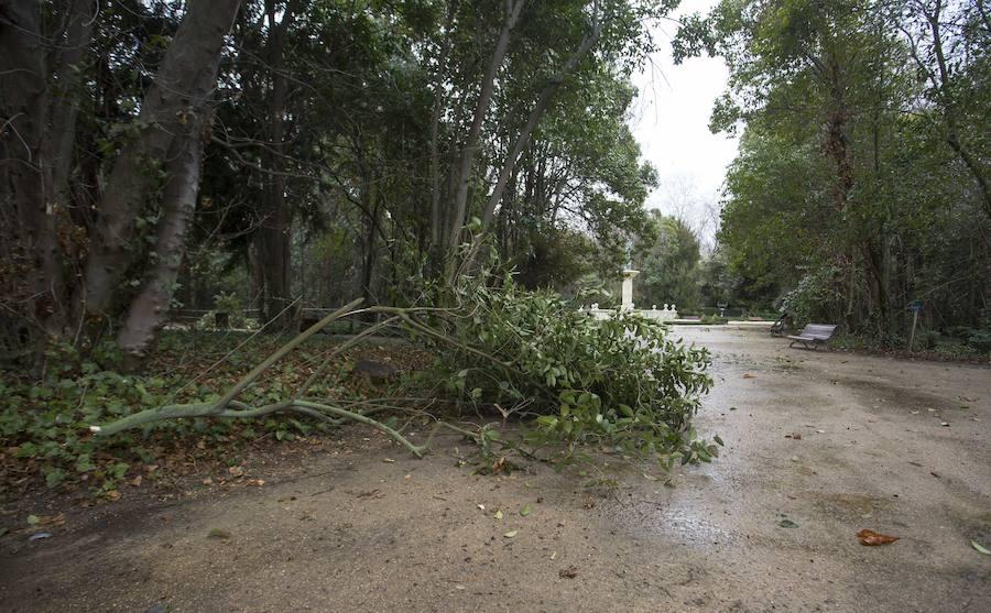 Así estaba el Campo Grande por el temporal