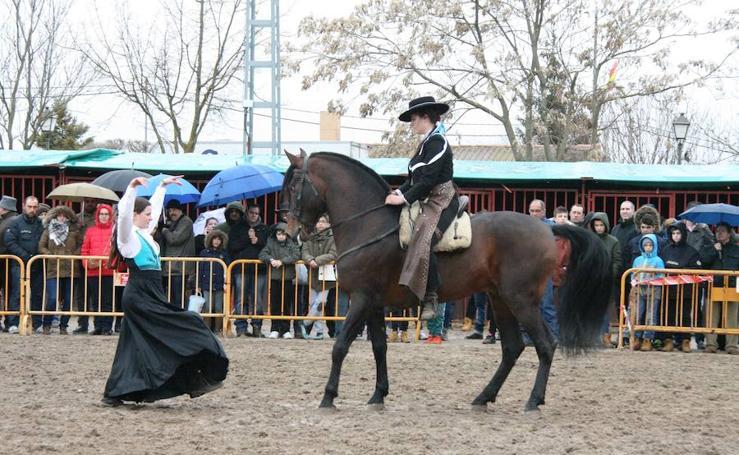 Feria del Ángel de Fuentepelayo