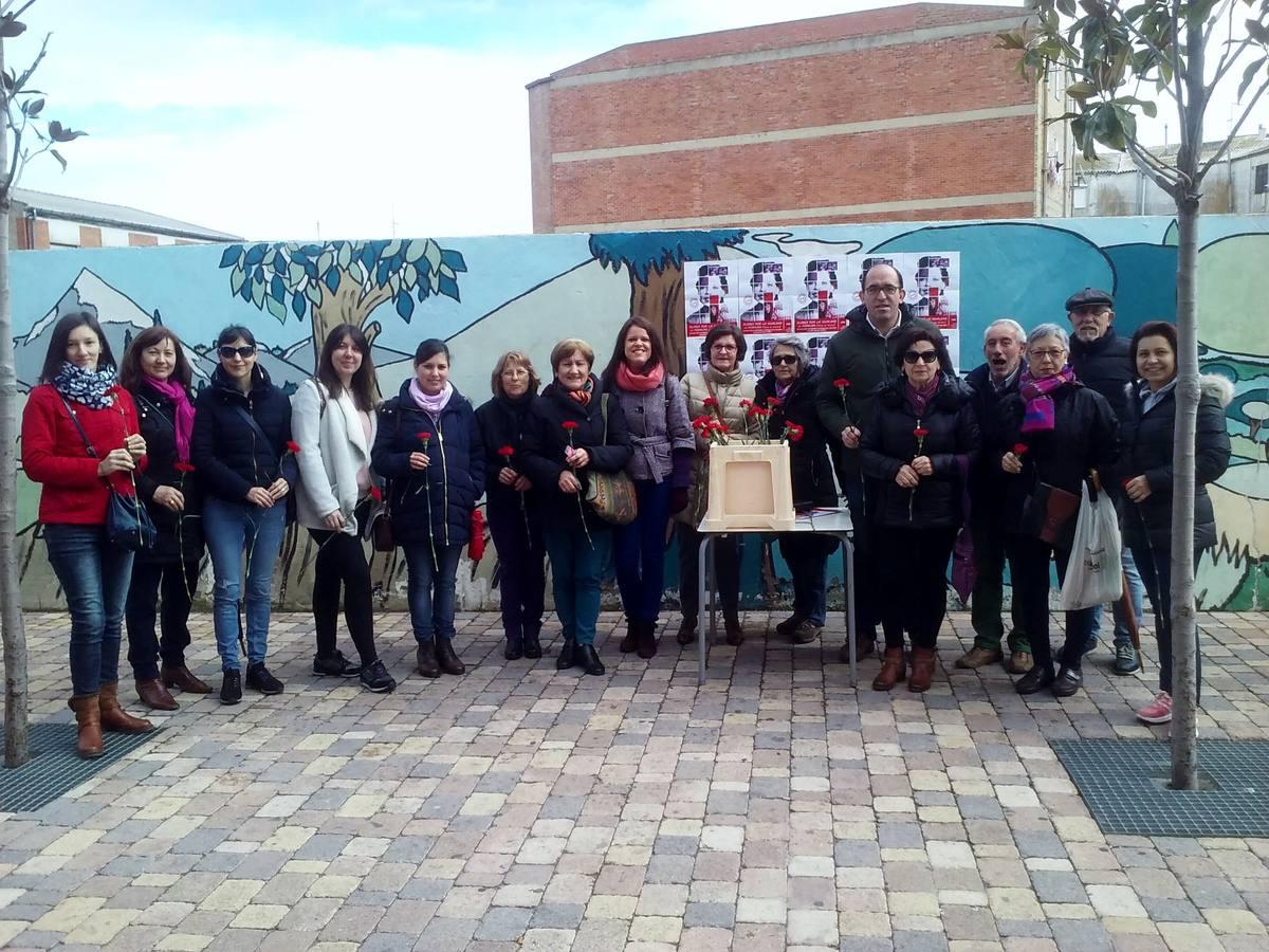 La provincia de Valladolid celebra el Día Internacional de la Mujer